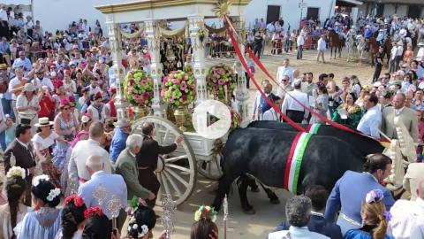 El Rocío, Spain: Brotherhoods arrive for the feast